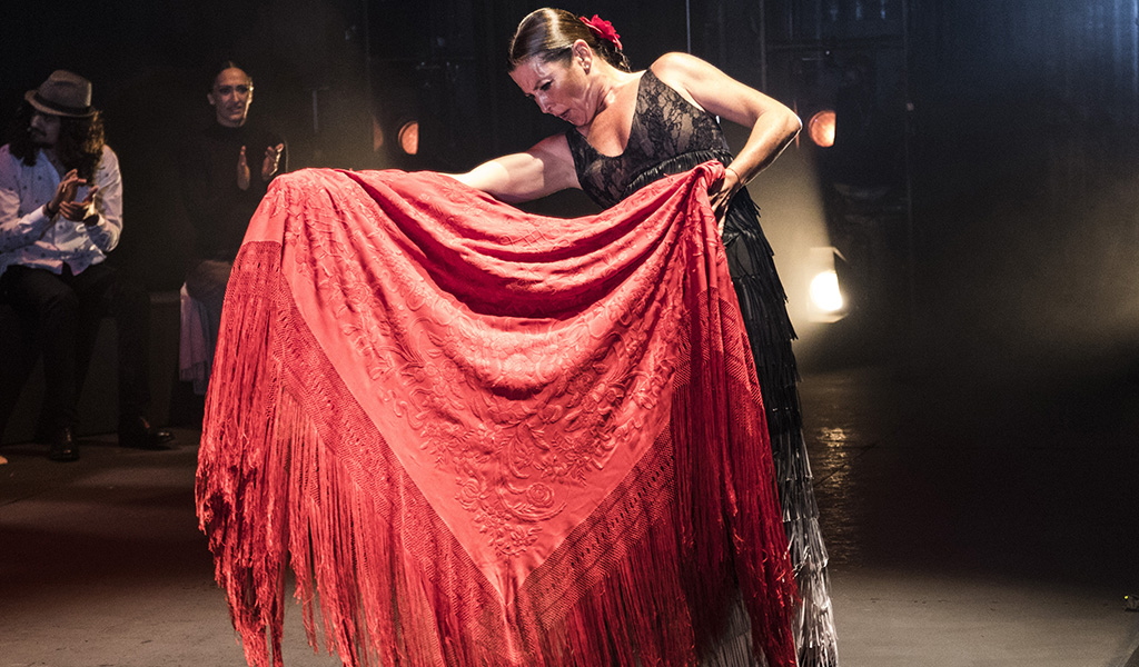 sara-baras-sombras-teatro-maestranza-sofia-wittert